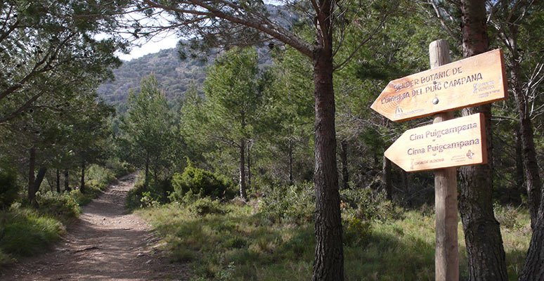 Puig Campana route with signs
